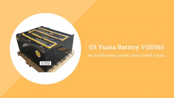GS Yuasa Battery VGD565